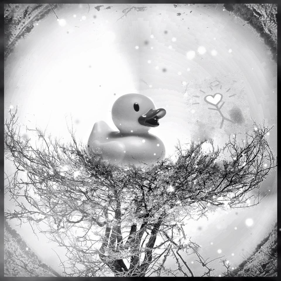 Bonnes fêtes et à très très bientôt!